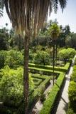 Trädgårdar i solsken på alcazaren av Seville Arkivfoton