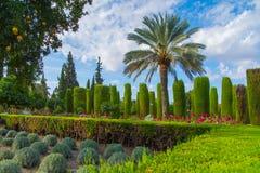 Trädgårdar på alcazaren, Cordoba Arkivfoto