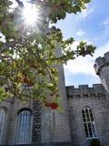 Trädgårdar på den Bodelwyddan slotten i norr Wales Royaltyfria Bilder