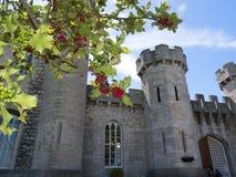 Trädgårdar på den Bodelwyddan slotten i norr Wales Fotografering för Bildbyråer