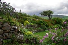 Trädgårdar på Ffald-y-Brenin i sommar royaltyfri foto