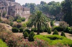 Trädgårdar utvändiga Pompeii Royaltyfri Bild