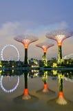 Trädgårdar vid fjärden i Singapore Arkivbild