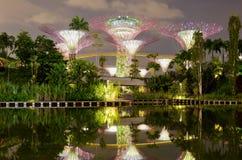 Trädgårdar vid fjärden i Singapore Arkivfoto