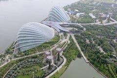 Trädgårdar vid fjärden i Singapore Royaltyfri Fotografi