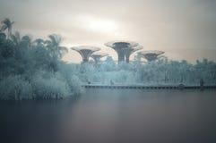 Trädgårdar vid fjärden, infrared, lång exponering Arkivbilder