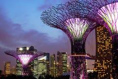 Trädgårdar vid fjärden på natten Singapore Fotografering för Bildbyråer