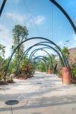 Trädgårdar vid fjärden, Singapore Fotografering för Bildbyråer