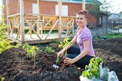 Trädgårdarbeten fungerande barn för trädgårds- kvinna Fotografering för Bildbyråer