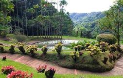 Trädgården av balataen, Martinique ö, franska västra Indies royaltyfri fotografi