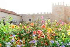 Trädgården av Santa Barbara tillsammans med den östliga vingen av den historiska slotten för ärkebiskop` s Färgrika blommor under Royaltyfria Foton