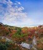 trädgården för lönn för härlig Momiji höst den färgrika på Kiyomizu-D Arkivbilder