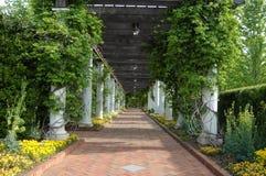 trädgården går Arkivbild