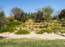 Trädgården i kibbutzer Sde Boker, Negev öken arkivfoto