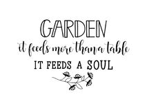 Trädgården matar det mer än bordlägger den matar en anda bokstäver Kalligrafivektorillustration royaltyfri illustrationer