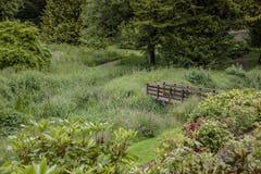 Trädgården på smickrar slotten Royaltyfri Fotografi