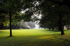 Trädgården parkerar Royaltyfri Bild