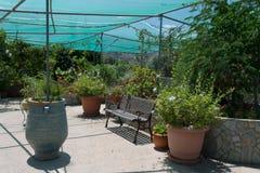 Trädgården under tältet Fotografering för Bildbyråer