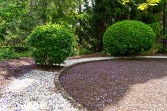 Trädgårdhäckar i rund trädgård royaltyfri bild