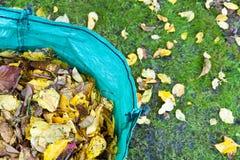 trädgårdleaves som återanvänder säcken Arkivfoton