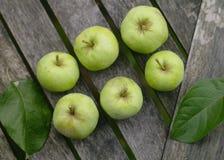 Trädgårds- äpplen Fotografering för Bildbyråer