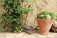 trädgårds- arbeta i trädgården springtimehjälpmedel Royaltyfri Bild