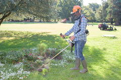 Trädgårds- arbetare som gör jobb Arkivbilder