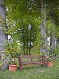 Trädgårds- bänk Arkivfoto
