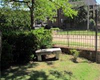 Trädgårds- bänk med metallstaketet och grönska arkivbilder