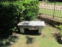 Trädgårds- bänk med metallstaketet och grönska fotografering för bildbyråer