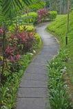trädgårds- bana Fotografering för Bildbyråer