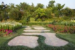Trädgårds- bana Arkivbild