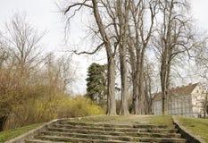 Trädgårds- bana bland träd Arkivfoton
