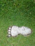 Trädgårds- bana för sten i fotformat Royaltyfri Bild