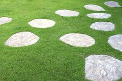 Trädgårds- bana med stenen Arkivfoton