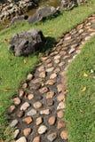 Trädgårds- bana med stenen Royaltyfri Fotografi
