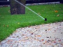 Trädgårds- bevattning, funktionsduglig spridare Arkivfoto