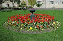 Trädgårds- blomsterrabatt Arkivfoton