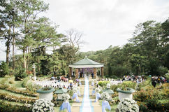 Trädgårds- bröllop Fotografering för Bildbyråer