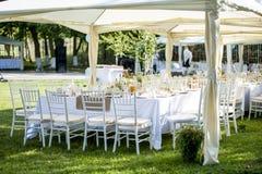 Trädgårds- bröllopparti fotografering för bildbyråer