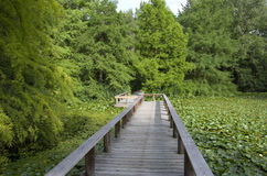 Trädgårds- bro Arkivfoto
