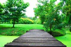Trädgårds- bro Royaltyfria Bilder