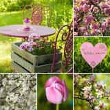 Trädgårds- collage för vår royaltyfria bilder