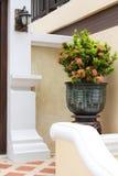 Trädgårds- dörrträ Arkivbilder