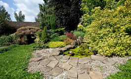 trädgårds- damm Arkivfoto