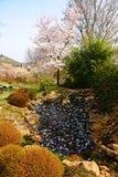 Trädgårds- damm för japan Arkivbilder
