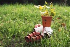 Trädgårds- dekor Arkivbild