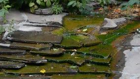 Trädgårds- dekorativ springbrunn arkivfilmer