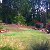 Trädgårds- dröm Arkivfoto