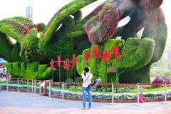 Trädgårds- expo Arkivfoto